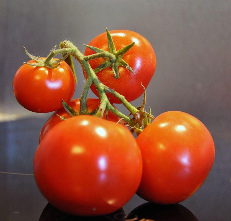 TomatoBunch
